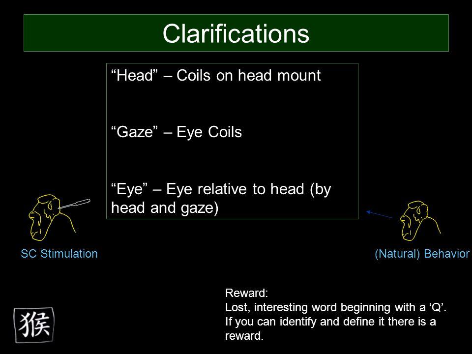 Head – Coils on head mount Gaze – Eye Coils Eye – Eye relative to head (by head and gaze) Reward: Lost, interesting word beginning with a 'Q'.