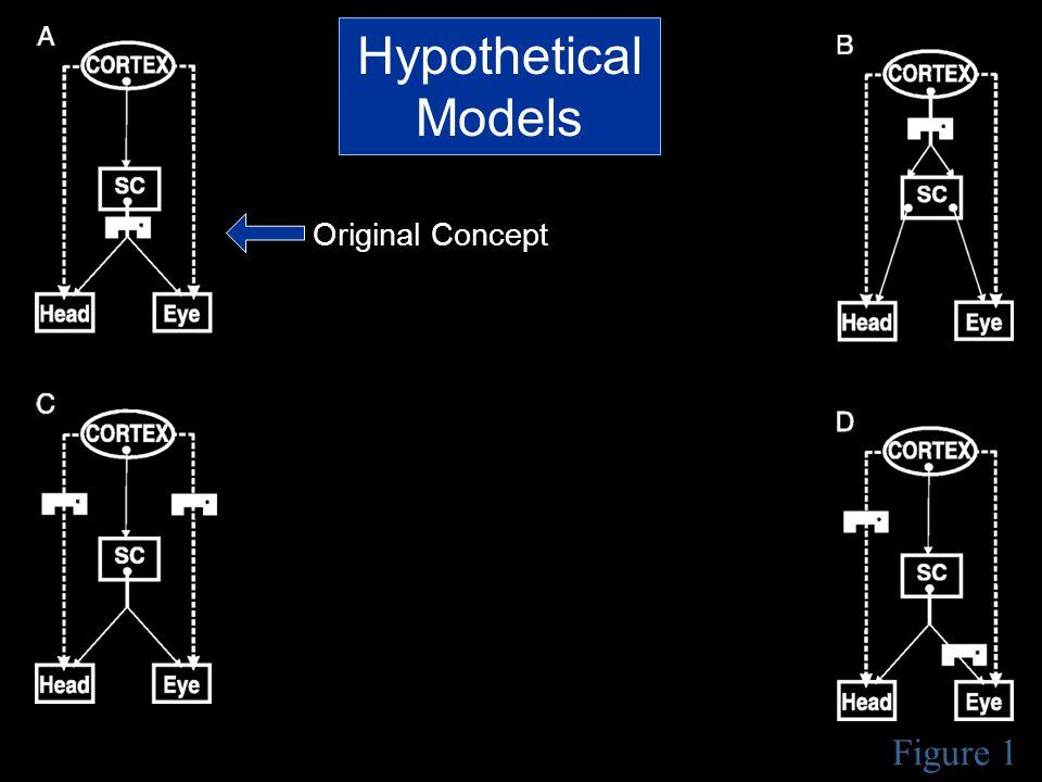 Figure 1 Hypothetical Models Original Concept
