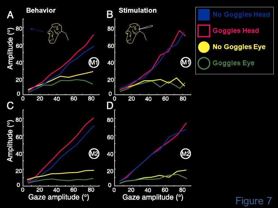 Figure 7 BehaviorStimulation Goggles Eye No Goggles Eye No Goggles Head Goggles Head