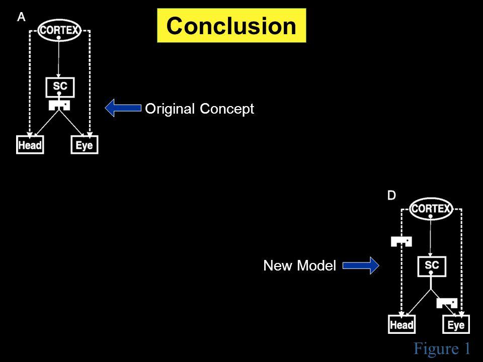 Figure 1 Conclusion Original Concept New Model