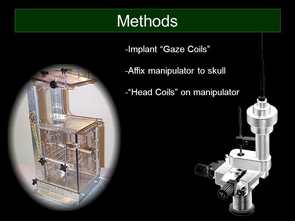 Methods -Implant Gaze Coils -Affix manipulator to skull - Head Coils on manipulator