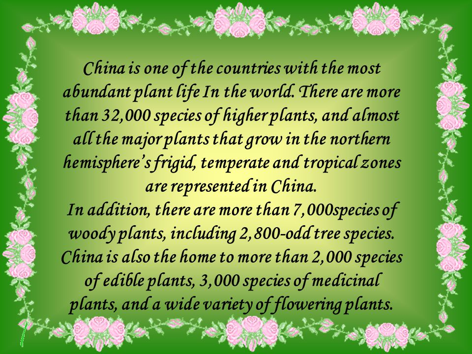 China is one of the countries with the most abundant plant life In the world.