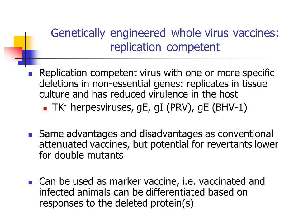 Genetically engineered whole virus vaccines: replication incompetent Replication incompetent virus with one or more specific deletions in essential genes: only replicates in complementing cells, transformed with the missing gene(s) replicates in the host, but does not enter new cells due to the absence of a protein essential for entry gH - herpesviruses (DISC: disabled infectious single cycle) Advantage: Safety Presentation to MHC class I and II, so induction of cellular and humoral responses Can be used as marker vaccine Disadvantage Antigen load may not be high enough for efficacy