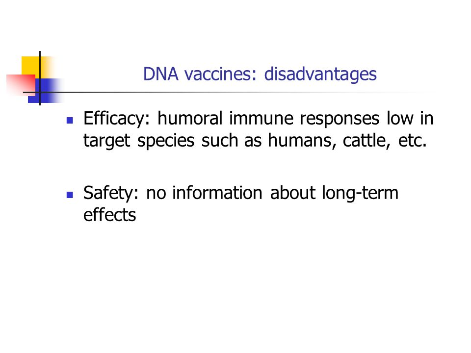 DNA vaccines: disadvantages Efficacy: humoral immune responses low in target species such as humans, cattle, etc.