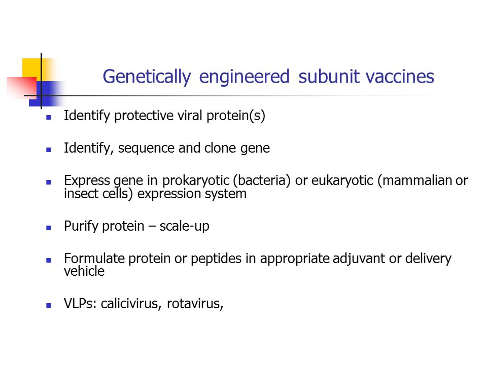 Genetically engineered subunit vaccines Identify protective viral protein(s) Identify, sequence and clone gene Express gene in prokaryotic (bacteria) or eukaryotic (mammalian or insect cells) expression system Purify protein – scale-up Formulate protein or peptides in appropriate adjuvant or delivery vehicle VLPs: calicivirus, rotavirus,
