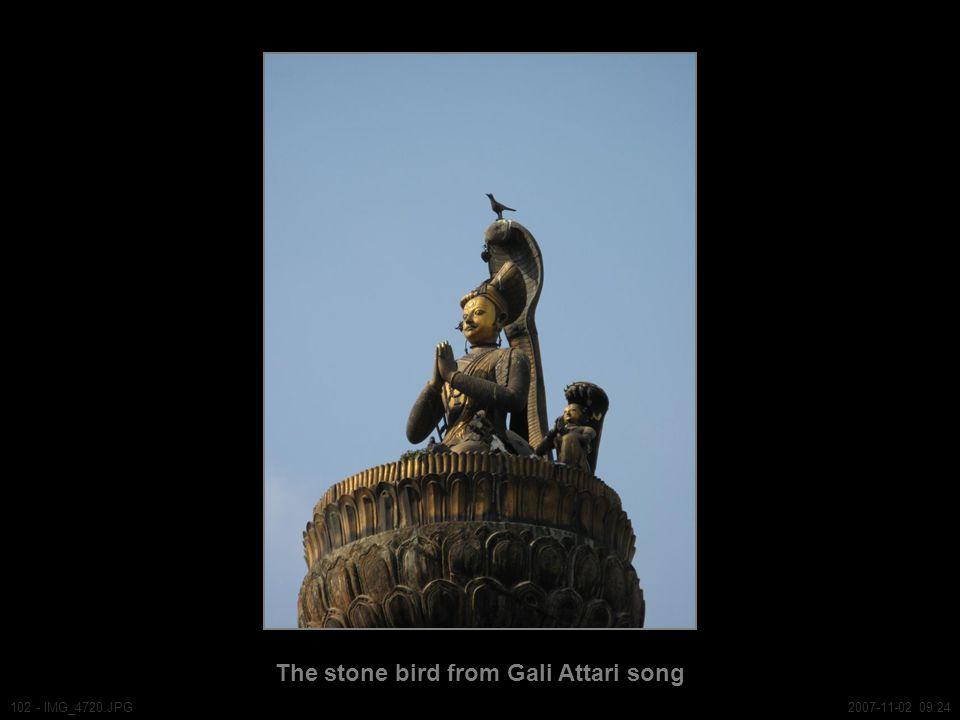 The stone bird from Gali Attari song 102 - IMG_4720.JPG2007-11-02 09:24
