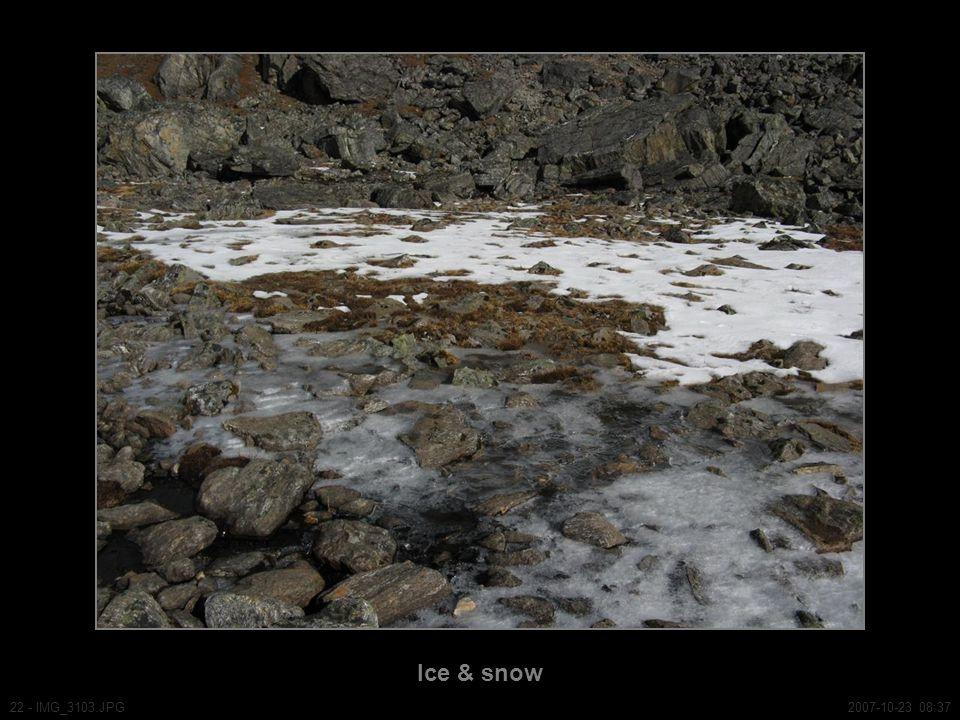 Ice & snow 22 - IMG_3103.JPG2007-10-23 08:37
