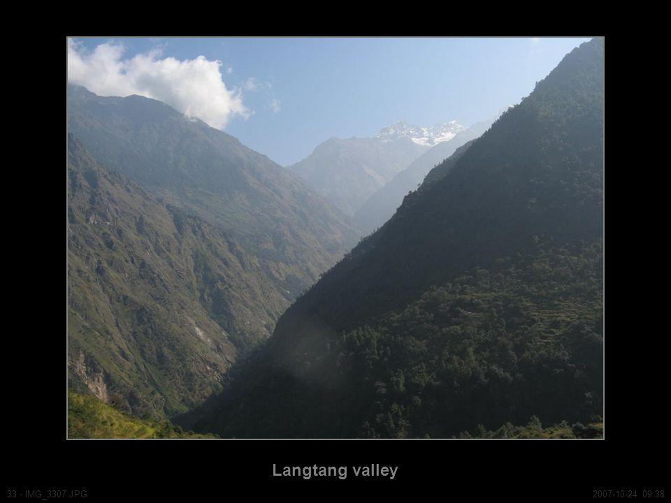 Langtang valley 33 - IMG_3307.JPG2007-10-24 09:38