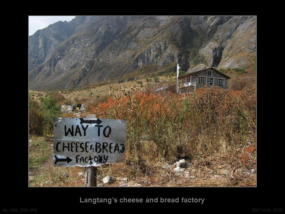 Langtang's cheese and bread factory 43 - IMG_3594.JPG2007-10-25 12:22