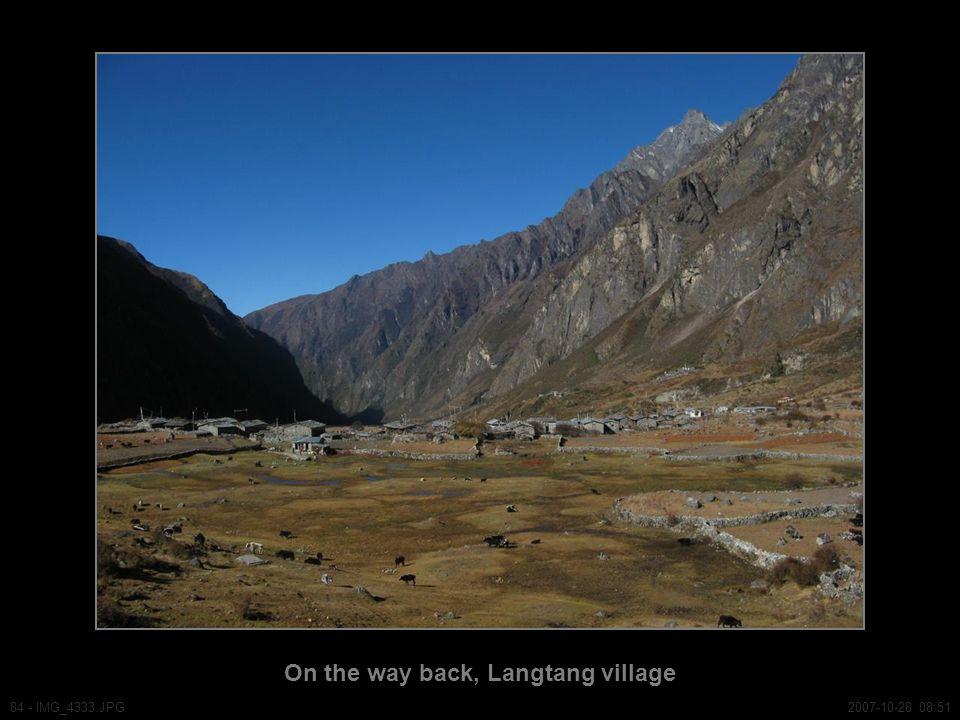 On the way back, Langtang village 84 - IMG_4333.JPG2007-10-28 08:51