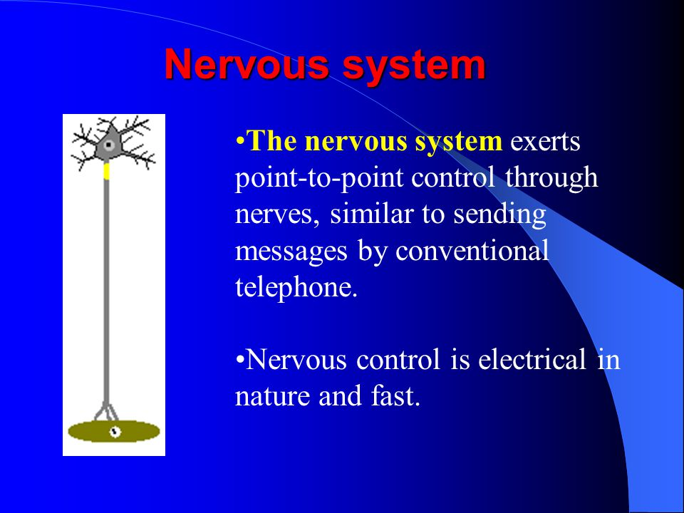 II. Endocrine vs. Nervous System Major communication systems in the body Integrate stimuli and responses to changes in external and internal environme