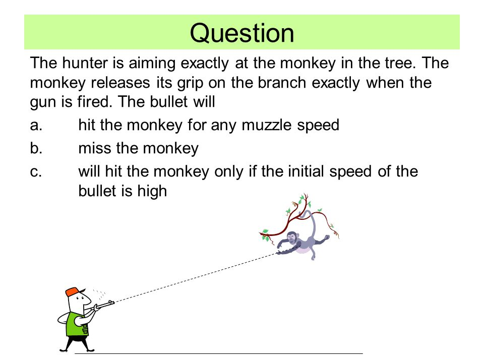 Question The hunter is aiming exactly at the monkey in the tree.