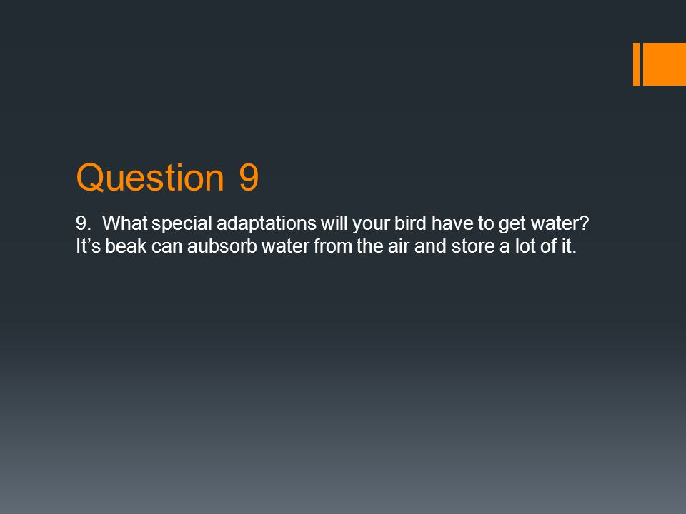 Question 7 & 8 WWhat type of food will your bird eat on this planet.