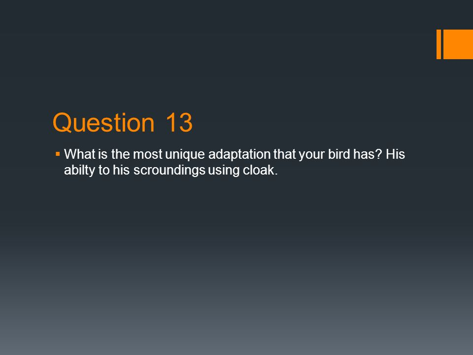 Question 11 & 12 11. What are the predators that might harm your bird.
