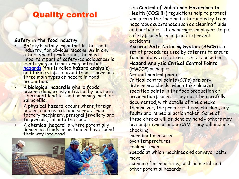 Safety in the food industry Safety is vitally important in the food industry, for obvious reasons. As in any other type of production, the most import