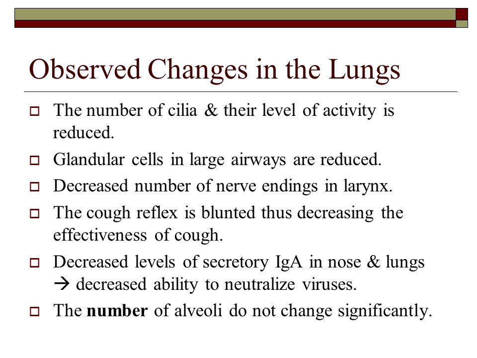 Observed Changes in the Lungs  The number of cilia & their level of activity is reduced.  Glandular cells in large airways are reduced.  Decreased