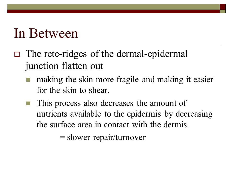 In Between  The rete-ridges of the dermal-epidermal junction flatten out making the skin more fragile and making it easier for the skin to shear. Thi