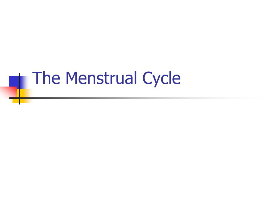 What is the menstrual cycle.The process in which females ripen or release one mature egg.