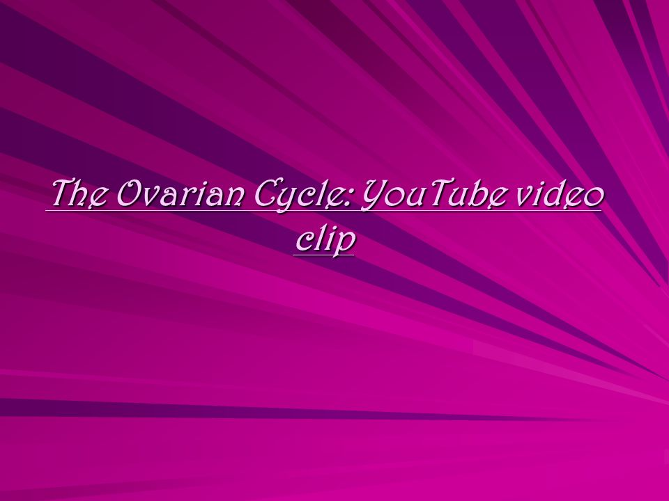 The Ovarian Cycle: YouTube video clip The Ovarian Cycle: YouTube video clip