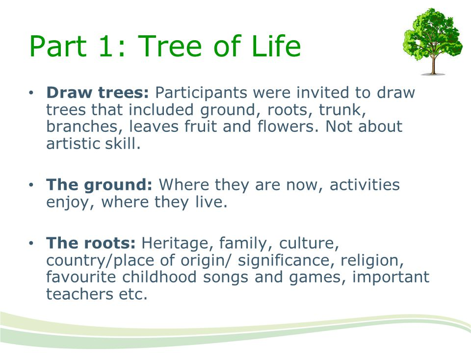 Part 1: Tree of Life Draw trees: Participants were invited to draw trees that included ground, roots, trunk, branches, leaves fruit and flowers. Not a
