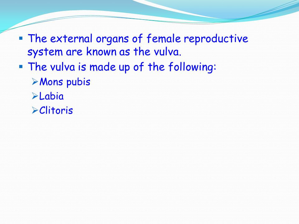  The external organs of female reproductive system are known as the vulva.  The vulva is made up of the following:  Mons pubis  Labia  Clitoris
