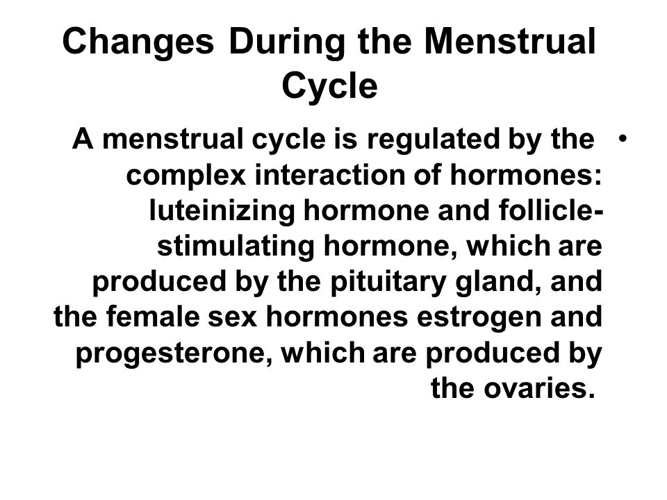 What happens during the menstrual cycle.