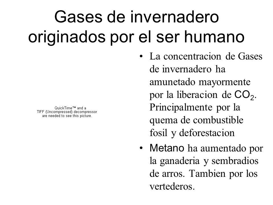 Gases de invernadero originados por el ser humano La concentracion de Gases de invernadero ha amunetado mayormente por la liberacion de CO 2. Principa