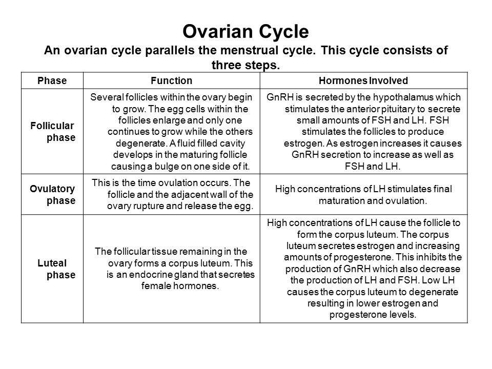 Ovarian Cycle An ovarian cycle parallels the menstrual cycle. This cycle consists of three steps. PhaseFunctionHormones Involved Follicular phase Seve