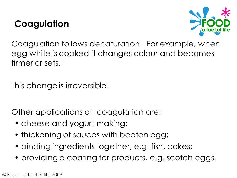 © Food – a fact of life 2009 Coagulation Coagulation follows denaturation.