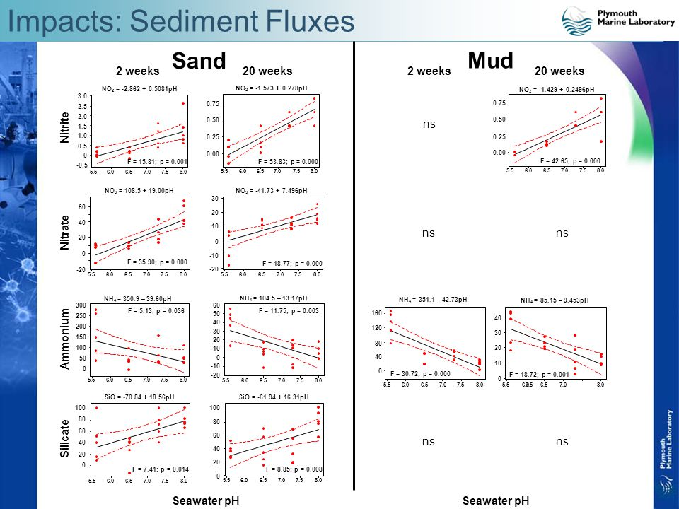 Impacts: Sediment Fluxes