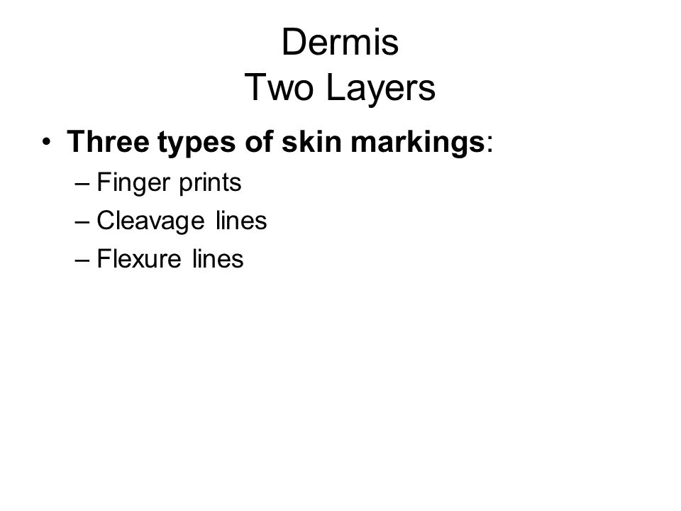 Dermis Two Layers Three types of skin markings: –Finger prints –Cleavage lines –Flexure lines