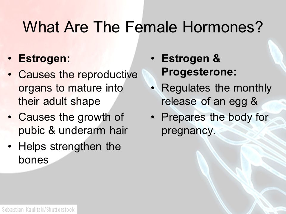 What Are The Female Hormones? Estrogen: Causes the reproductive organs to mature into their adult shape Causes the growth of pubic & underarm hair Hel