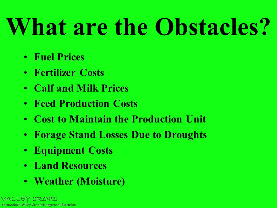 Improving Hay Quality Means Less Hay Needed Hay Storage Losses 5-30% or Greater How can storage be improved.