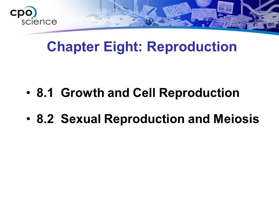Chapter Eight: Reproduction 8.1 Growth and Cell Reproduction 8.2 Sexual Reproduction and Meiosis