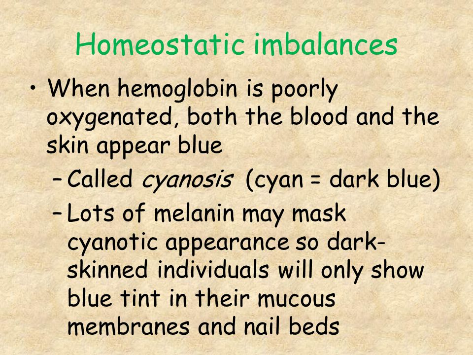Homeostatic imbalances When hemoglobin is poorly oxygenated, both the blood and the skin appear blue –Called cyanosis (cyan = dark blue) –Lots of mela