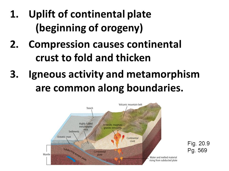 Convergence between oceanic and continental plates produces mountain belts that are much bigger and more complicated than island arc complexes. B. Oce