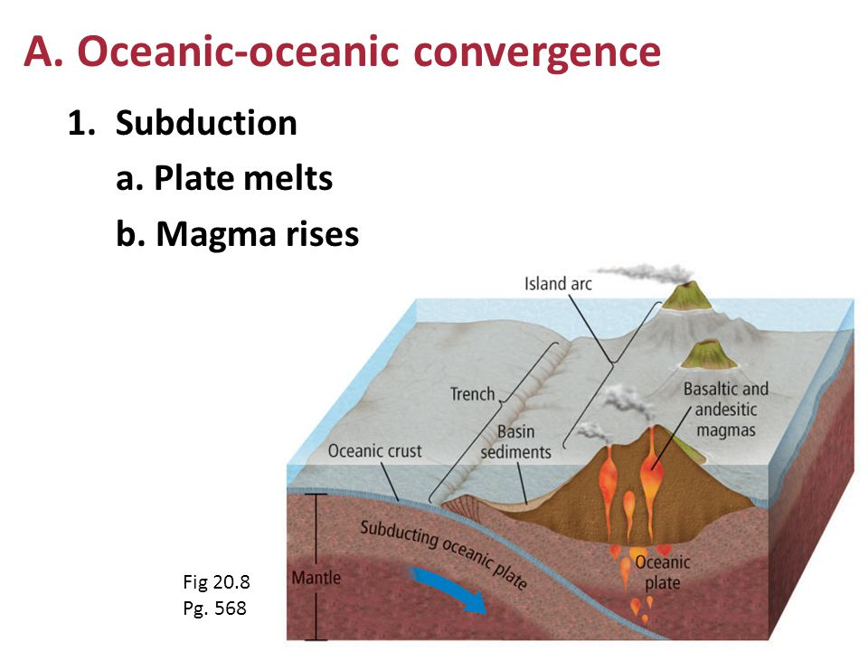 1.Subduction a. Plate melts b. Magma rises A. Oceanic-oceanic convergence Fig 20.8 Pg. 568