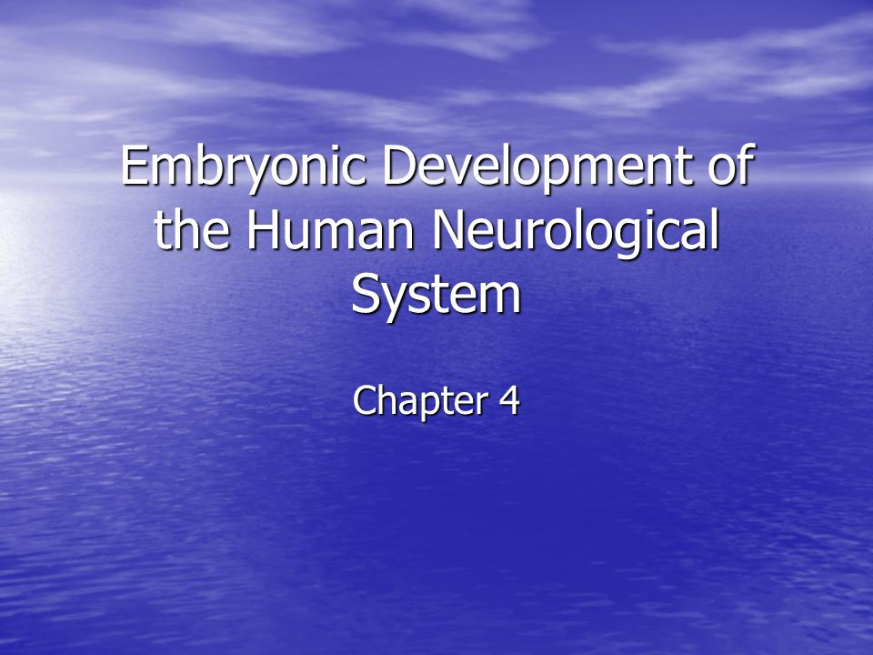 Embryonic Development of the Human Neurological System Chapter 4