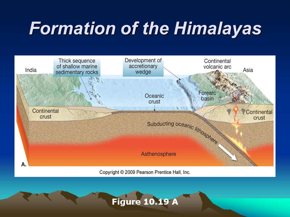 Formation of the Himalayas Figure 10.19 A