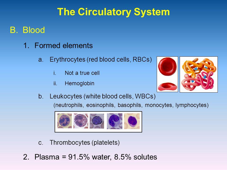 The Circulatory System 1.Formed elements B.Blood a.Erythrocytes (red blood cells, RBCs) i.Not a true cell ii.Hemoglobin b.Leukocytes (white blood cells, WBCs) (neutrophils, eosinophils, basophils, monocytes, lymphocytes) c.Thrombocytes (platelets) 2.Plasma = 91.5% water, 8.5% solutes
