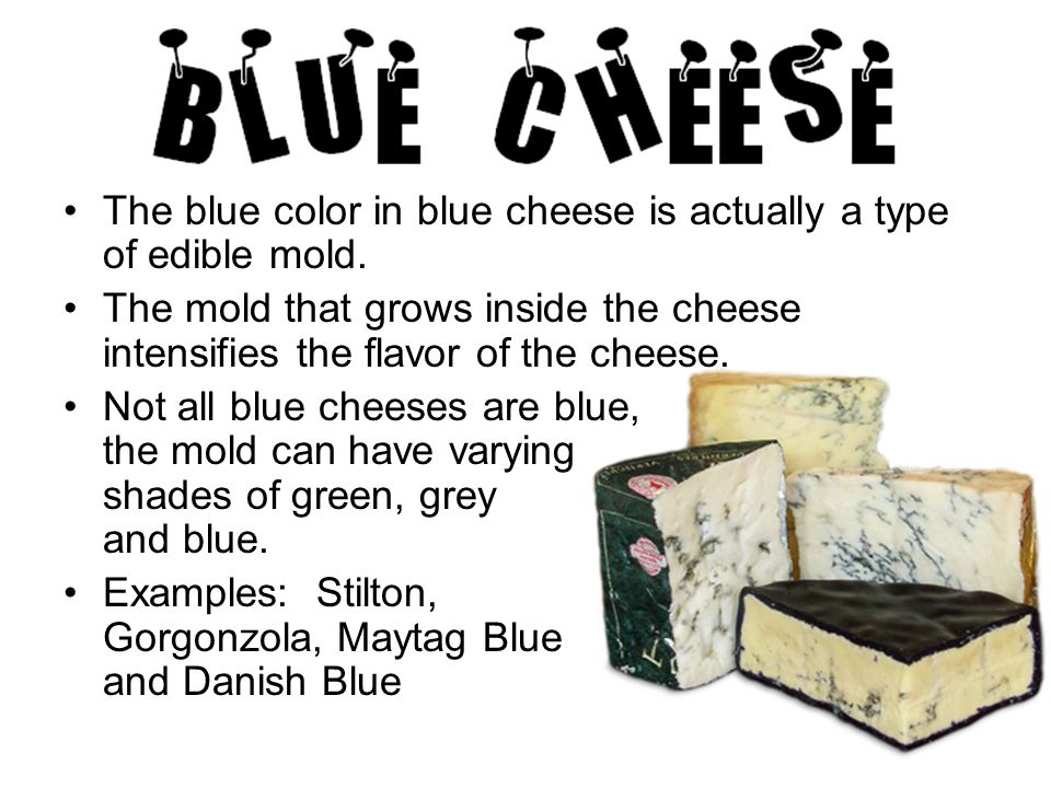 The blue color in blue cheese is actually a type of edible mold.