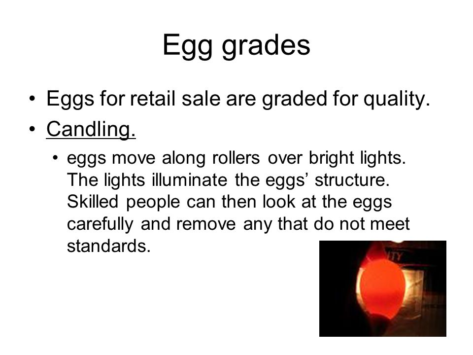 Egg grades Eggs for retail sale are graded for quality. Candling. eggs move along rollers over bright lights. The lights illuminate the eggs' structur
