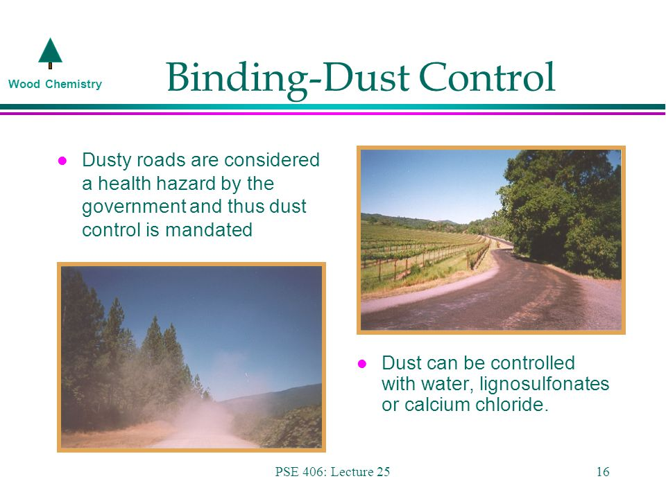 Wood Chemistry PSE 406: Lecture 2516 Binding-Dust Control l Dusty roads are considered a health hazard by the government and thus dust control is mandated l Dust can be controlled with water, lignosulfonates or calcium chloride.