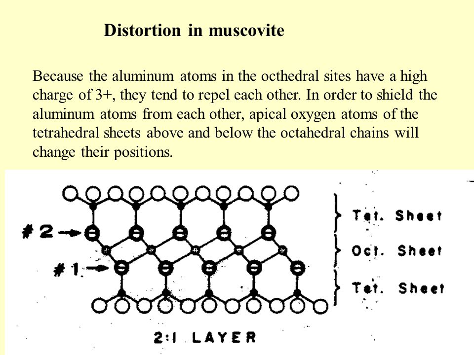 Because the aluminum atoms in the octhedral sites have a high charge of 3+, they tend to repel each other.