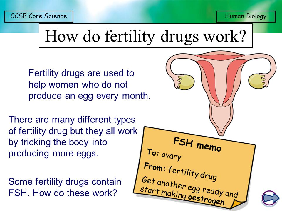 GCSE Core ScienceHuman Biology How do fertility drugs work? FSH memo To: ovary From: fertility drug Get another egg ready and start making oestrogen.