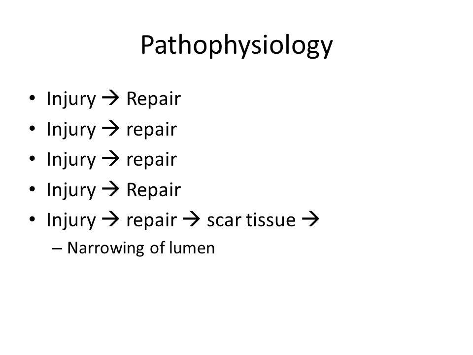 Pathophysiology Injury  Repair Injury  repair Injury  Repair Injury  repair  scar tissue  – Narrowing of lumen