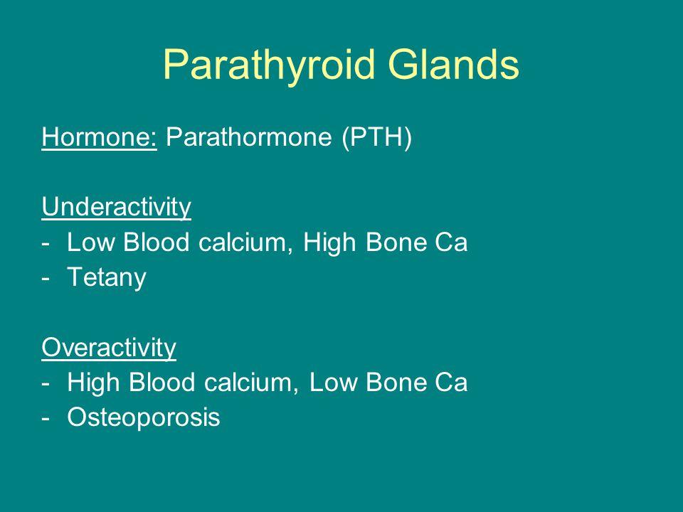 Parathyroid Glands Hormone: Parathormone (PTH) Underactivity -Low Blood calcium, High Bone Ca -Tetany Overactivity -High Blood calcium, Low Bone Ca -O
