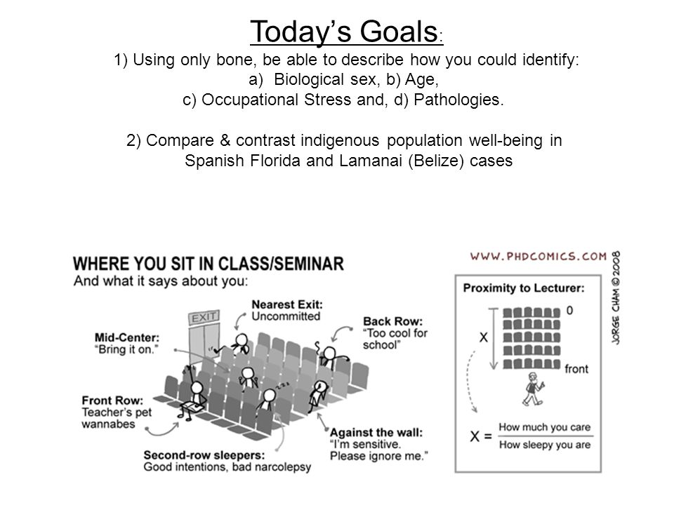 Today's Goals : 1) Using only bone, be able to describe how you could identify: a)Biological sex, b) Age, c) Occupational Stress and, d) Pathologies.