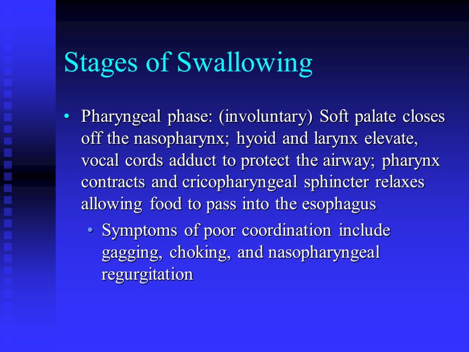 Stages of Swallowing Pharyngeal phase: (involuntary) Soft palate closes off the nasopharynx; hyoid and larynx elevate, vocal cords adduct to protect t