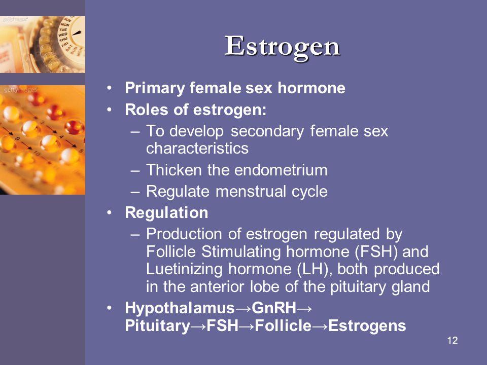 12 Estrogen Primary female sex hormone Roles of estrogen: –To develop secondary female sex characteristics –Thicken the endometrium –Regulate menstrua